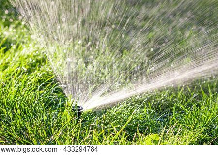 Automatic Watering Of The Lawn. Spraying Water On The Grass. Watering Systems. Water Supply Nozzle.