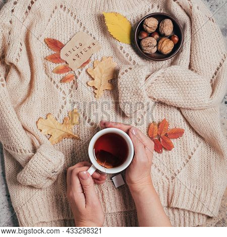 Female Hands Holding Hot Black Tea, Sweater, Nuts And Autumn Leaves. Autumn Relax Concept