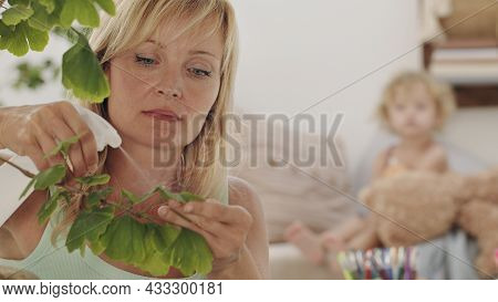 Blonde Woman Takes Care Of The Plants In The Living Room, Sprays On The Green Leaves While Her Daugh