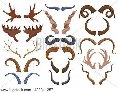 Wild Animals Horns Antlers, Reindeer, Bull, Goat. Hunting Trophy Deer, Ibex, Sheep And Moose Horns I