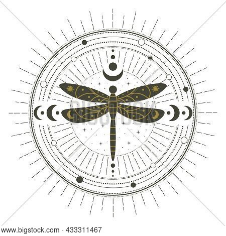 Magical Witchcraft Dragonfly Insect Mystical Spell Circle. Witchcraft Magic Spell Circle, Mystical D