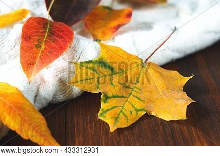 Knitted White Sweater With Red And Orange Autumn Leaves