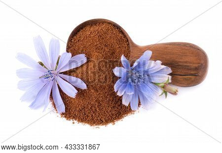 Chicory Powder And Flower In Wooden Spoon, Isolated On White Background. Cichorium Intybus.