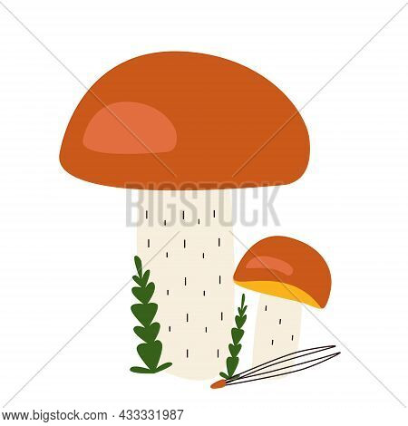 Edible Mushrooms With Orange Caps With Moss And A Coniferous Needle In Hand Drawn Style