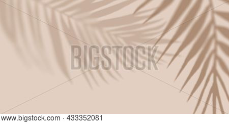 Shadow Nature Palm Light Pastel Background. Creative Copyspace. Unobtrusive Background With Shadow.