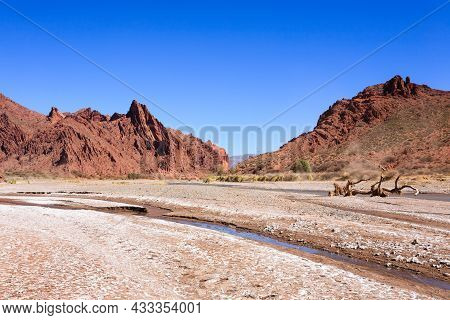 Bolivian Canyon Near Tupiza,bolivia.quebrada Seca,duende Canyon.bolivian Landscape