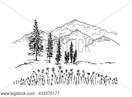 Hand Drawn Vector Landscape With Mountains, Trees And Flowers In Mountain Valley. Mountain Peak Icon