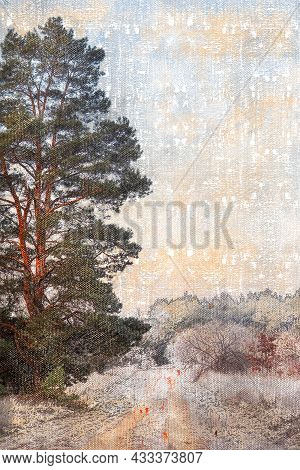 Dirt Road In Winter Forest. Covered With Frost And Snow Trees And Bushes. Tall Pine Tree On The Left