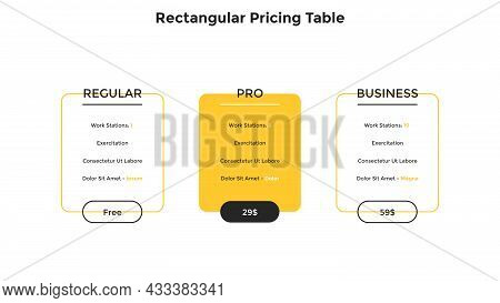 Three Rectangular Pricing Tables With List Of Included Options - Regular, Pro, Business. Concept Of