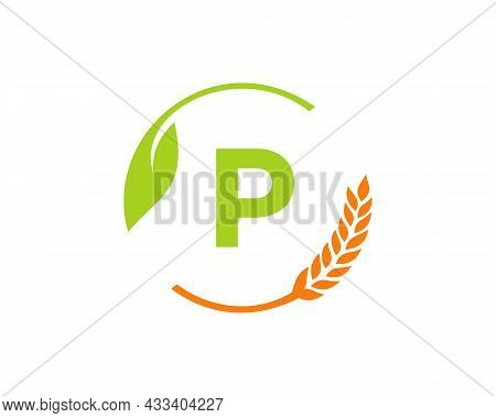 Agriculture Logo On P Letter Concept. Agriculture And Farming Logo Design. Agribusiness, Eco-farm An