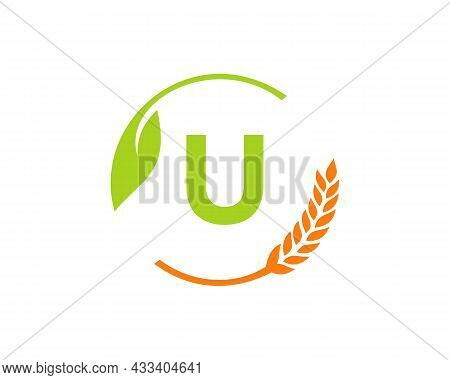 Agriculture Logo On U Letter Concept. Agriculture And Farming Logo Design. Agribusiness, Eco-farm An