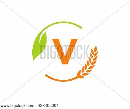Agriculture Logo On V Letter Concept. Agriculture And Farming Logo Design. Agribusiness, Eco-farm An