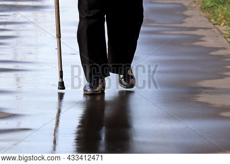 Woman Walking With A Cane On A Wet Street, Female Legs In On Sidewalk After Rain. Concept Of Disabil