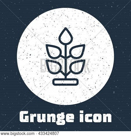 Grunge Line Plant Icon Isolated On Grey Background. Seed And Seedling. Leaves Sign. Leaf Nature. Mon
