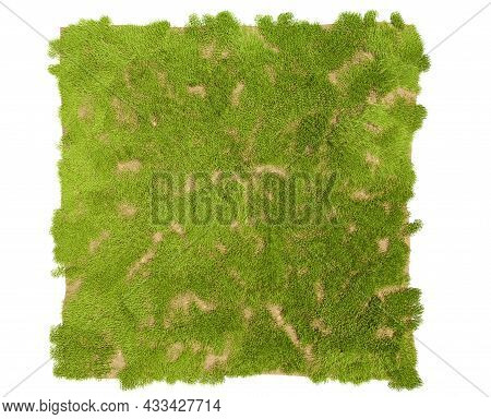 Isolated Grass On A White Background, 3d Illustration. Grass Texture For The Background, 3d Renderin