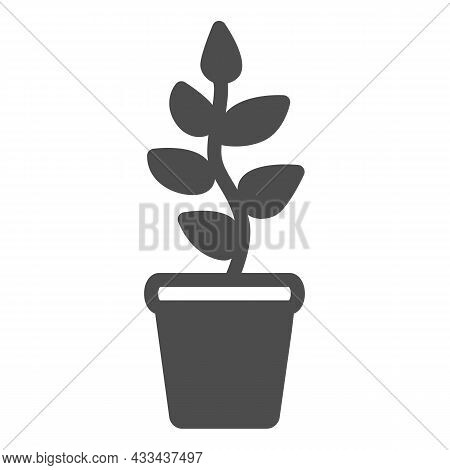Plant With Leaves, Seedlings In Pot Solid Icon, Gardening Concept, Growing Plant Vector Sign On Whit