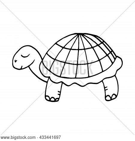Turtle Hand Drawn Doodle. Vector, Scandinavian, Nordic, Monochrome, Minimalism. Animal Cute Baby Pri