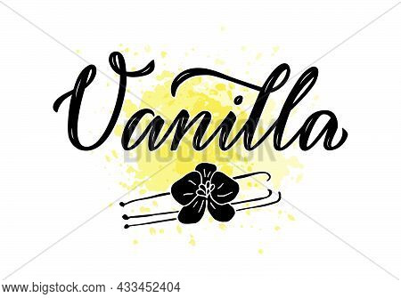 Vector Illustration Of Vanilla Lettering For Packages, Product Design, Banner, Sticker, Spice Shop P