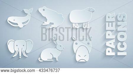 Set Rabbit, Sheep, Elephant, Hippo Or Hippopotamus, Frog And Whale Icon. Vector