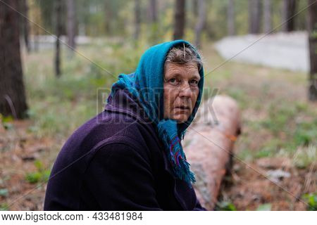 Defocus Portrait Of Russian Grandmother Senior Old Woman Seating On Log In Pine Autumn Forest. Old W