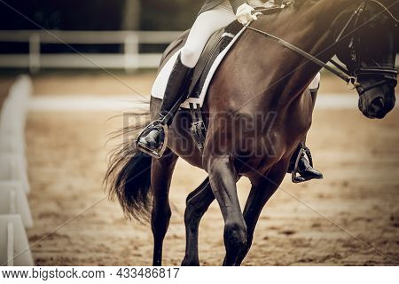 Equestrian Sport. The Leg Of The Rider In The Stirrup, Riding On A Horse. Stirrup Close-up. Dressage