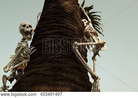Outdoor Decor For Helloween. Dead Owner In The Window Of The House. Skeleton. Halloween Scenery. Ter