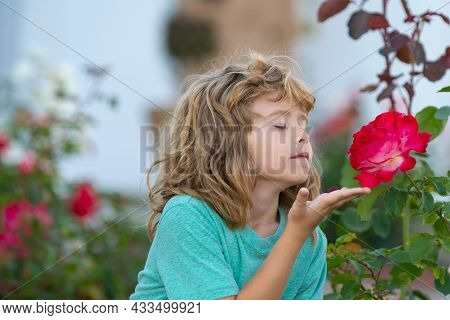 Child Smelling Flower. Kids Funny Face. Cute Kid Enjoy Natural Environment Through Outdoor Activity