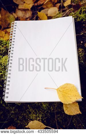 Empty Paper Notepad With Autumn Red And Yellow Leaves. Open Notepad On Fallen Autumn Leaves Backgrou