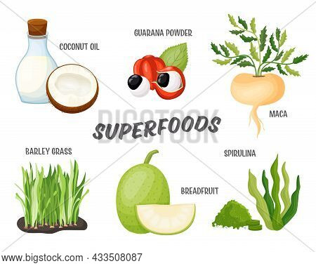 Superfoods Set, Vector Illustration Of Detox Product. Healthy Super Foods, Dietary Supplement For We