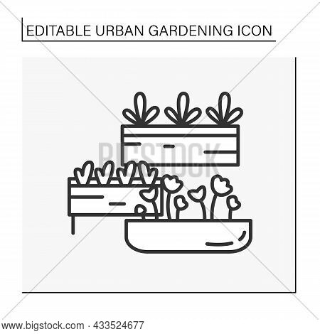 Houseplant Line Icon. Modern Aesthetic Plant For Houses. Organic Products. Farming And Garden Space.