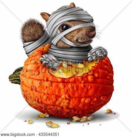 Mummy Squirrel And Cute Zombie Squirrels Fakk Season Symbol As A Halloween Animal  Eating An Orange