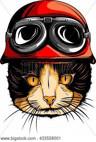 Portrait Of Persian Cat With Vintage Helmet. Vector
