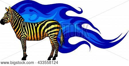 Graphic Illustration Of A Standing Zebra In Isolate On A White Background .vector Illustration.