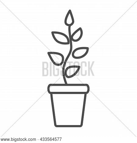 Plant With Leaves, Seedlings In Pot Thin Line Icon, Gardening Concept, Growing Plant Vector Sign On