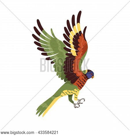 Loriina Parrot Flying With Spread Wings. Tropical Rainbow Lorikeet With Long Tail. Exotic Bird With