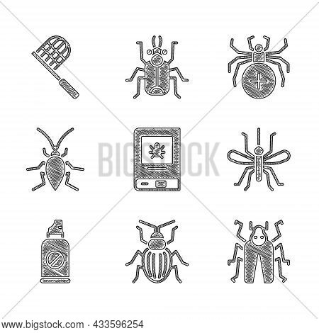 Set Book About Insect, Chafer Beetle, Beetle Bug, Mosquito, Spray Against Insects, Cockroach, Spider