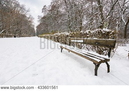 Wooden Bench In Snow. Moody Winter Scenery With Leafless Trees In The City Park