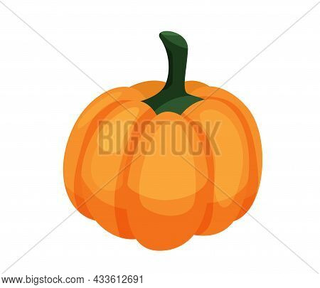 Pumpkin Isolated On White Background In Cartoon Flat Style Isolated On White Background. Vector Illu