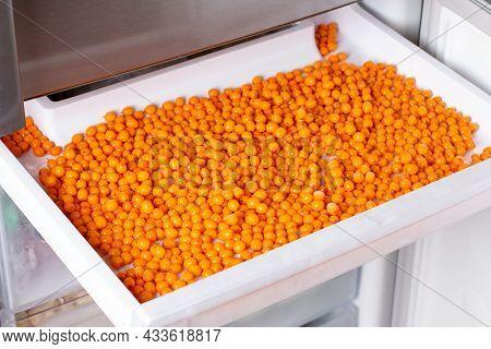Frozen Sea Buckthorn. Frozen Berries In The Freezer. Food Storage