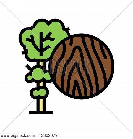Teak Wood Color Icon Vector. Teak Wood Sign. Isolated Symbol Illustration