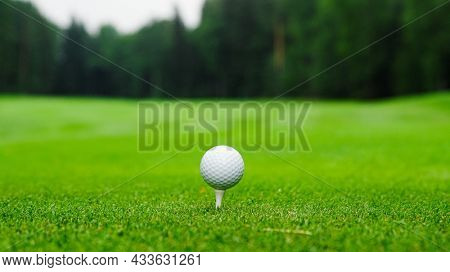 Golf ball on the green lawn, close-up