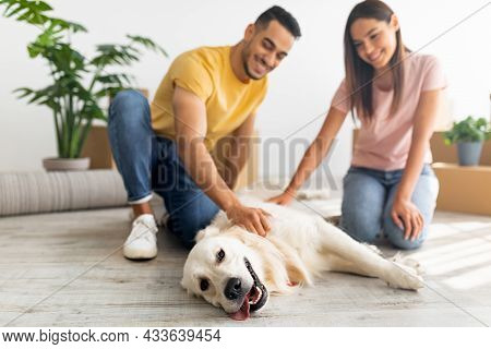 Home Relocation. Positive Young Multiracial Couple Stroking Their Dog In New Home On Moving Day, Sel