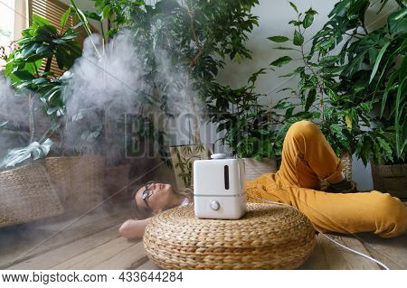 Care For Houseplants: Use Humidifier At Home To Keep Humidity And Plants Health Concept With Young H