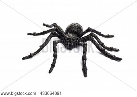 Black Rubber Spider Toy Isolated On A White Background. Black Spider Toy.
