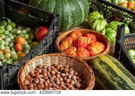 Harvest Of Ripe And Unripe Tomatoes In Crates, Pumpkin, Courgettes And Basket With Hazelnuts Stacked