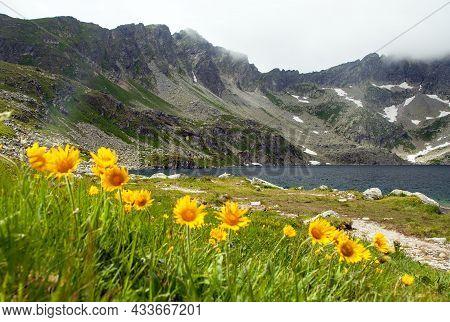 Velke Hincovo Pleso Lake, Mount Koprovsky Stit And Yellow Flowers, Vysoke Tatry Or High Tatras Mount
