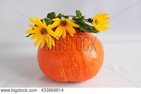 Autumn Background For Thanksgiving. Orange Pumpkin And Yellow Flowers On A White Background.