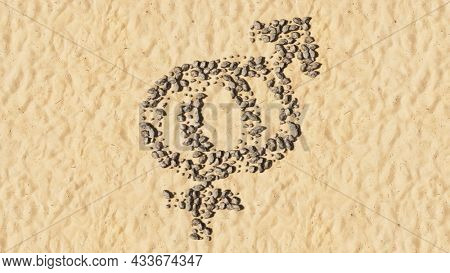 Concept conceptual stones on beach sand handmade symbol shape, golden sandy background, gender signs. A 3d illustration metaphor for heterosexual relationships, couples, romance tradition and family