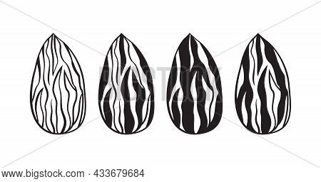 Almond Silhouettes Vector Icon, Nuts Seed Set Isolated On White Background. Food Illustration