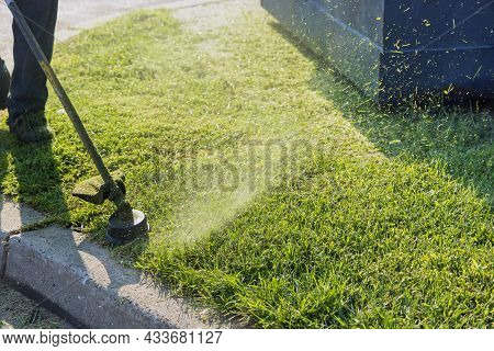 Close Up On String Trimmer Head Weed Cutter Brushcutter Working The Yard Cutting Grass It The Garden